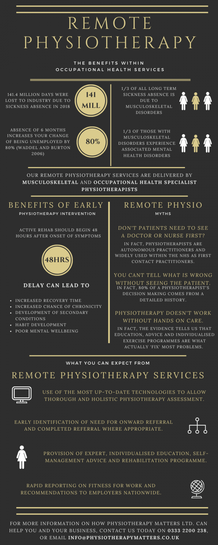 Remote Physiotherapy Services Infographics