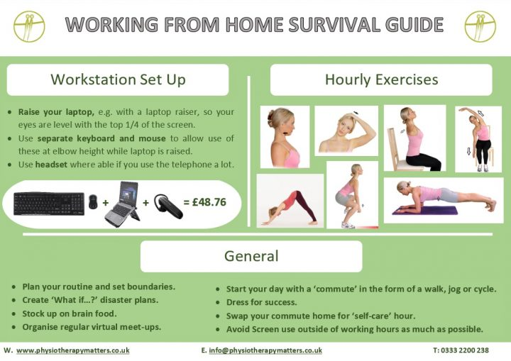 Working From Home Survival Guide infographic